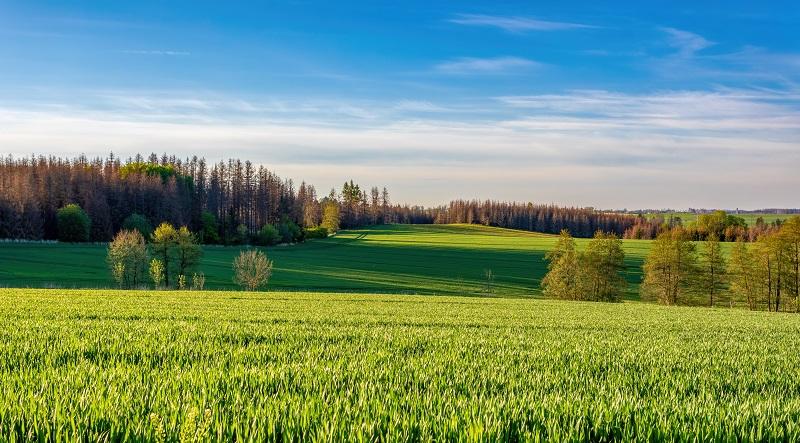 Inwestowanie w ziemię coraz atrakcyjniejsze